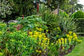 HALL O TH WOOD, CHESHIRE: BORDER, SPRING, APRIL, PHORMIUM TENAX, ECHIUM, CORDYLINE, MELIANTHUS MAJOR, EUPHORBIA MILLIFERA, EUPHORBIA, LAWN