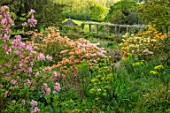 GRAVETYE MANOR, SUSSEX: COUNTRY GARDEN, APRIL, SPRING, AZALEAS ON THE HILLSIDE, WISTERIA PERGOLA , SLOPES, SLOPING, WOODLAND, SHADE, SHADY