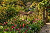 GRAVETYE MANOR, SUSSEX: COUNTRY GARDEN, APRIL, SPRING, PATH, BORDER WITH TULIPS, EVENING LIGHT