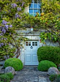 VILLAGE FARM HOUSE, GLOUCESTERSHIRE: FRONT DOOR, ROSA BANKSIAE LUTEA, WISTERIA FLORIBUNDA, CLIMBERS, HOUSE, WALLS, CLIMBING, SHRUBS, MAY, SPRING, COUNTRY, GARDEN