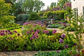 DESIGNER JAMES SCOTT, THE GARDEN COMPANY: GRAVEL TERRACE, BORDER WITH ALLIUMS PURPLE SENSATION, GIGANTEUM, GLOBEMASTER, VIOLET BEAUTY, CHRISTOPHII, MAY, SPRING