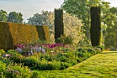 PETTIFERS, OXFORDSHIRE: DESIGNER GINA PRICE: BORDER, SPRING, MAY, YEW TOPIARY, YEW HEDGES, HEDGING, CAMASSIA ELECTRA, ALLIUM PURPLE SENSATION, MALUS HUPEHENSIS