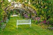 THE MANOR HOUSE, STEVINGTON, BEDFORDSHIRE: MAY, SPRING, WHITE BENCH, SEAT, WISTERIA, LABURNUM VOSSII, ARCH, ALLIUM PURPLE SENSATION, ARCHWAY, TUNNEL, AVENUE, YELLOW, CLIMBERS