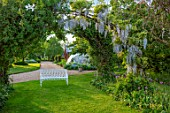 THE MANOR HOUSE, STEVINGTON, BEDFORDSHIRE: MAY, SPRING, WHITE BENCH, SEAT, WISTERIA, ARCHWAY, TUNNEL, AVENUE, BLUE, FLOWERS, CLIMBERS