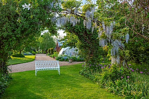 THE_MANOR_HOUSE_STEVINGTON_BEDFORDSHIRE_MAY_SPRING_WHITE_BENCH_SEAT_WISTERIA_ARCHWAY_TUNNEL_AVENUE_B