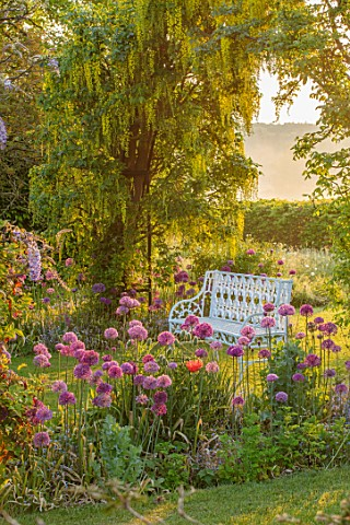 THE_MANOR_HOUSE_STEVINGTON_BEDFORDSHIRE_SPRING_MAY_EARLY_MORNING_SUNRISE_WHITE_METAL_BENCH_SEATS_LAB