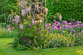 THE MANOR HOUSE, STEVINGTON, BEDFORDSHIRE: SPRING, MAY, ALLIUM PURPLE SENSATION, WISTERIA ROSEA, COMBINATION, ASSOCIATION