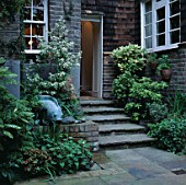 TINY FOUNTAIN AND POOL TUCKED BESIDE SHALLOW STEPS LEADING TO BACK DOOR. DESIGNER: JILL BILLINGTON.