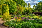 THE PICTON GARDEN AND OLD COURT NURSERIES, WORCESTERSHIRE: BORDER, MAY, SPRING, IRIS GOLDEN IMMORTAL, ALLIUM UNIVERSE, BULBS, YELLOW, PURPLE, FLOWERS, BLOOMING, BLOOMS