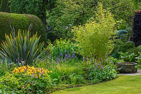 YORK_GATE_YORKSHIRE_THE_OLD_ORCHARD_LAWN_IRIS_PSEUDACORUS_VAR_BASTARDII_POLYGONUM_BISTORTA_SUPERBUM_