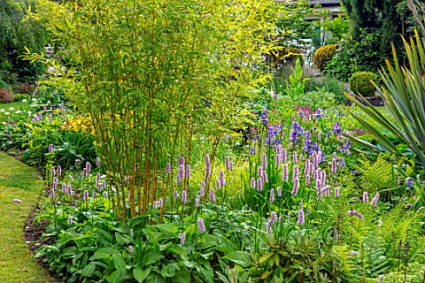 YORK_GATE_YORKSHIRE_THE_OLD_ORCHARD_LAWN_POLYGONUM_BISTORTA_SUPERBUM_HEMEROCALLIS_CORKY_PHORMIUM_BAM
