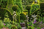 YORK GATE, YORKSHIRE: PATH, HERB GARDEN, CLIPPED, TOPIARY, BOX , YEW, HEDGES, HEDGING, SUMMER, JUNE, ALLIUMS, VERBENA