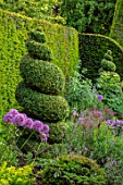 YORK GATE, YORKSHIRE: HERB GARDEN, CLIPPED, TOPIARY, BOX , YEW, HEDGES, HEDGING, SUMMER, JUNE, ALLIUMS