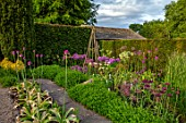 YORK GATE, YORKSHIRE: HERB GARDEN, JUNE, SUMMER, CLIPPED TOPIARY HEDGES, ALLIUMS, CUTTING, FLOWERS, BLOOMS, BLOOMING, FLOWERING