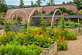 ALDERWOOD HOUSE, KENT: VEGETABLE, KITCHEN GARDEN, POTAGER, RUNNER BEANS, ARCHES, FRENCH MARIGOLDS, CALENDULA OFFICINALIS, WOODEN RAISED BEDS, VEGETABLES, BEETROOTS, CELERIAC