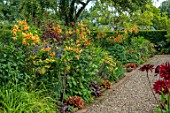 MORTON HALL GARDENS, WORCESTERSHIRE: WEST GARDEN, HOT BORDERS, ORANGE FLOWERS OF LILIUM HENRYI, SALVIA AMISTAD, ACHILLEA, ALLIUM SPHAEROCEPHALON, HEUCHERA, SUMMER