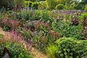 PRIVATE GARDEN, BERKSHIRE: DESIGNER ISTVAN DUDAS: PATH, BORDERS, SEDUM AUTUMN JOY, ECHINOPS PLATINUM BLUE, HELIANTHUS MAGIC ROUNDABOUT, MONARDA MOHAWK, AMARANTHUS RED ARMY