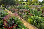 PRIVATE GARDEN, BERKSHIRE: DESIGNER ISTVAN DUDAS: PATH, BORDERS, SEDUM AUTUMN JOY, MUSA ENSETE MAURELII, HELIANTHUS MAGIC ROUNDABOUT, AMARANTHUS RED ARMY, SALVIA OESTFRIESLAND
