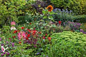 PRIVATE GARDEN, BERKSHIRE: DESIGNER ISTVAN DUDAS: SEDUM AUTUMN JOY, CANNA INDICA PURPUREA, SUNFLOWER, CLEOME CHERRY QUEEN, BORDERS, SUMMER, PERENNIALS, ANNUALS
