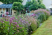 THE OLD VICARAGE, WORMINGFORD, ESSEX: DESIGNER JEREMY ALLEN - BORDERS, LAWN, AGASTACHE ALABASTER, ASTER MONCH, ECHINACEA RUBINGLOW, LYTHRUM ROSE QUEEN, VERONICASTRUM INSPIRATION