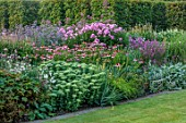 THE OLD VICARAGE, WORMINGFORD, ESSEX: DESIGNER JEREMY ALLEN - BORDERS, AGASTACHE ALABASTER, ECHINACEA RUBINGLOW, LYTHRUM ROSE QUEEN, VERONICASTRUM INSPIRATION, PHLOX ROSA PASTEL