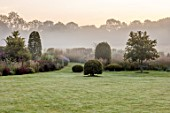 SILVER STREET FARM, DEVON. DESIGNER ALASDAIR CAMERON - LAWN, NIST, FOG, CLIPPED BEECH SHAPES, MOLINIA HEIDEBRAUT, MORNING, AUTUMN, GRASSES, BORDERS, BORROWED LANDSCAPE