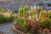 WILDEGOOSE NURSERY, SHROPSHIRE: PATHS, WALLED, GARDENS, COUNTRY, BORDERS, ACTAEA SIMPLEX CHOCOHOLIC, BANEBERRY, PERENNIALS, DECIDUOUS, SHED, OFFICE